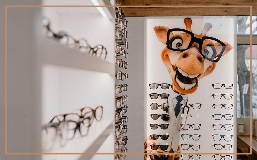salon optyczny wystawa oprawek żyrafa wokularach